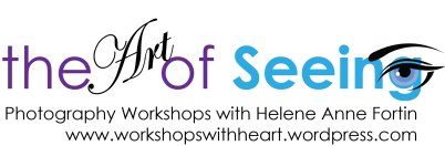 The art of Seeing header png larger